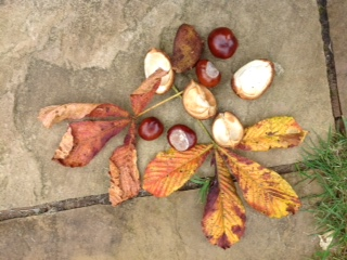 16 October  2016 – Conkers: Harvest of Childhood
