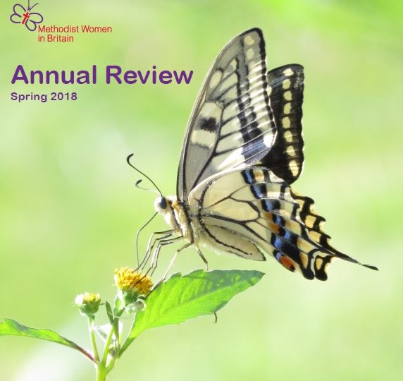 Annual Review – Spring 2018