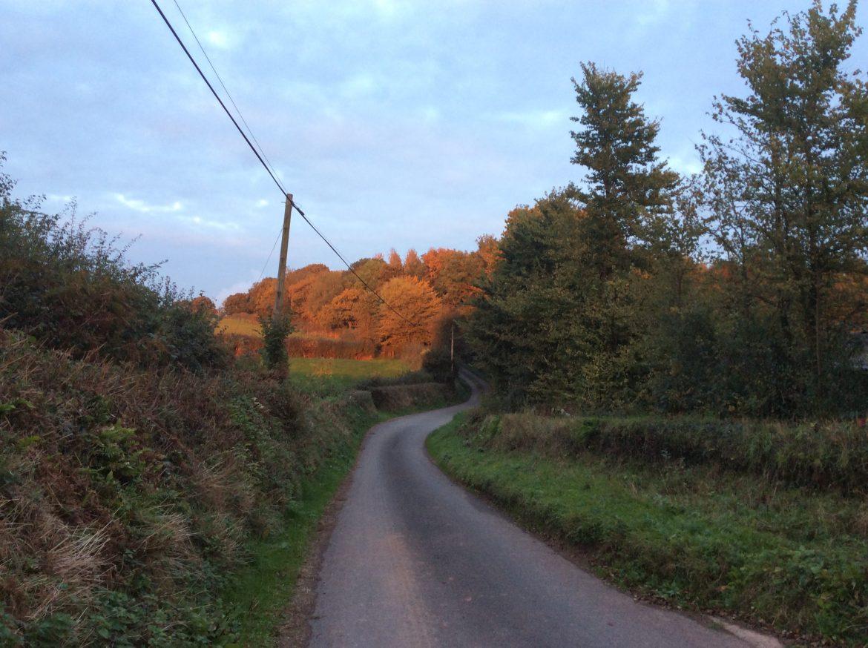 Devon lane in autumn