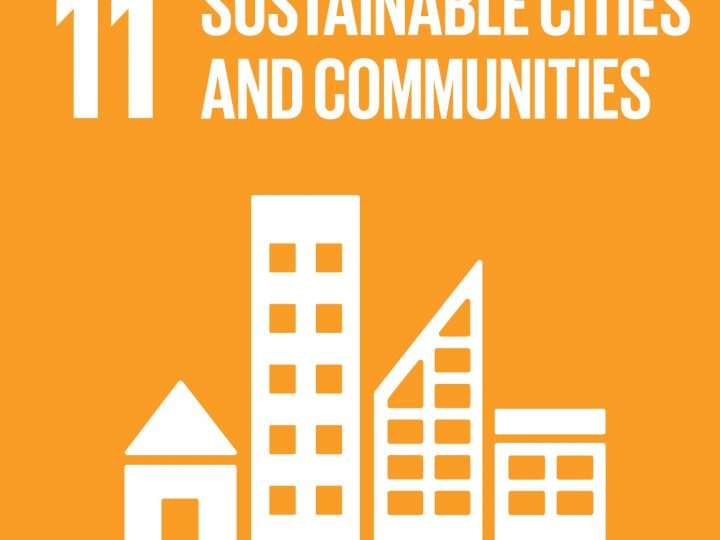 July 2021 – SDG11 Sustainable Cities and Communities