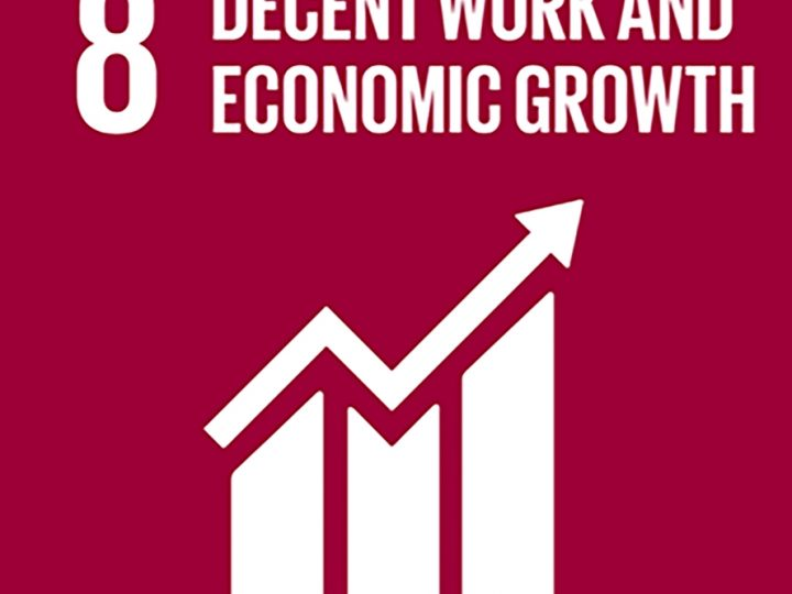 May 2021 – SDG8 Sustainable economic growth and decent employment