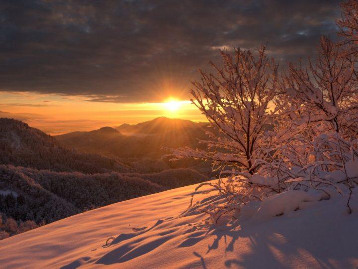 Saturday 24th November – Light in the Darkness