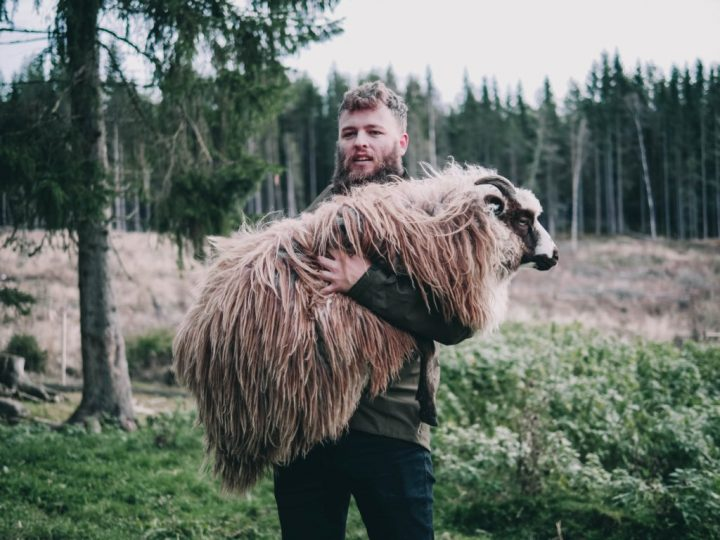 Saturday 24th April 2021: I am… the Good Shepherd