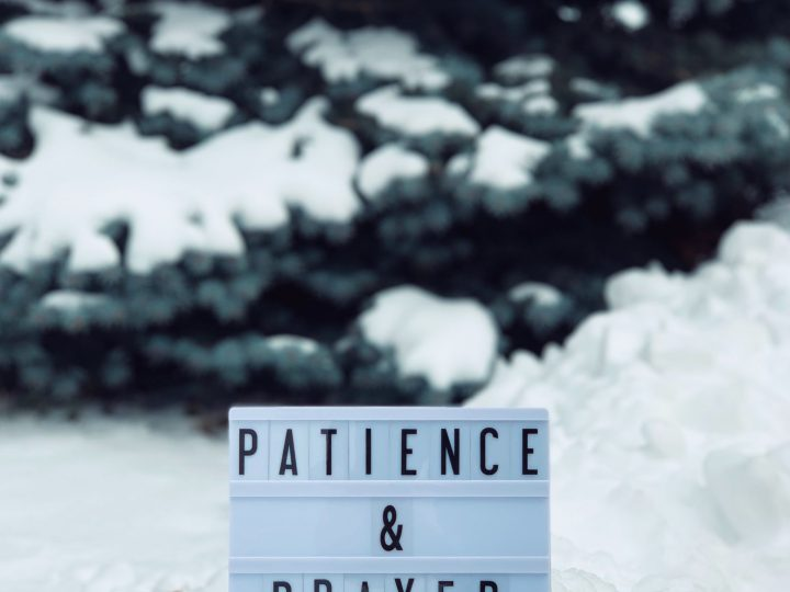 Saturday 26th June – Patience